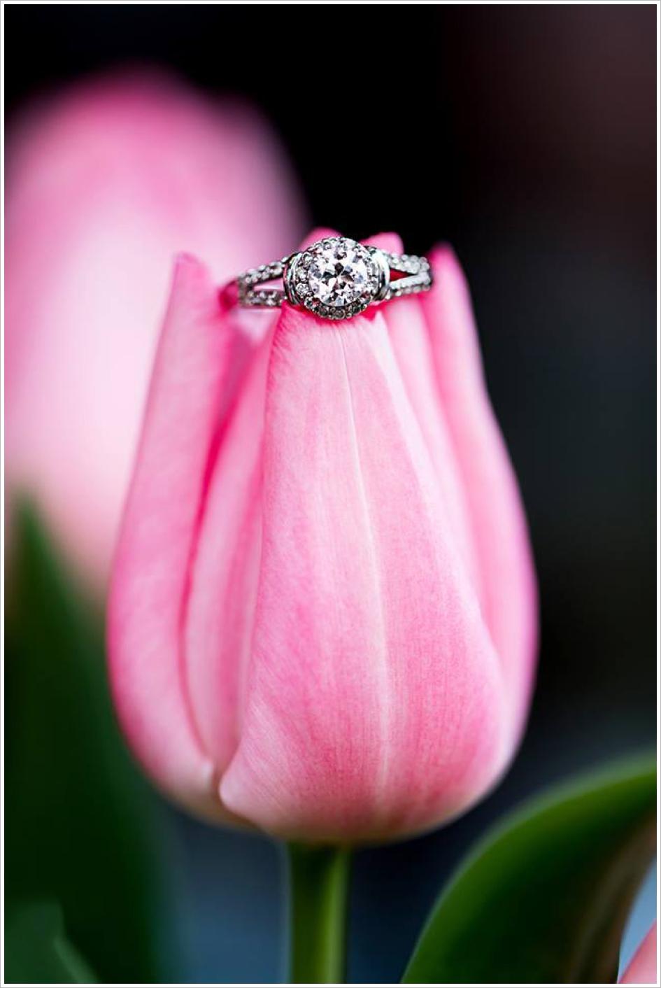 Creative Wedding Ring Photo