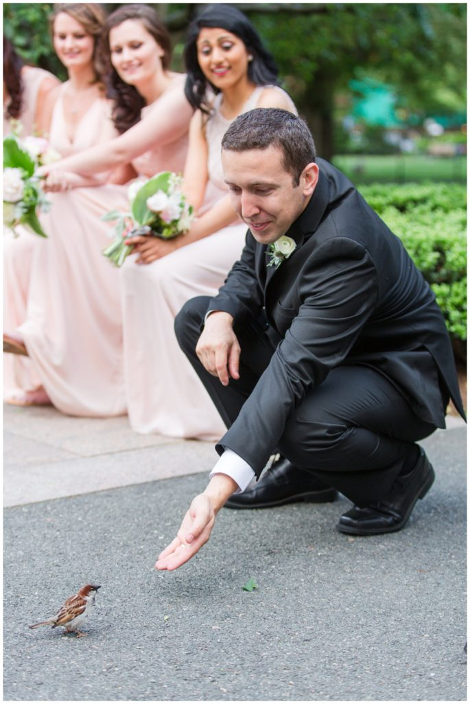 Boston_public_gardens_wedding_photographers